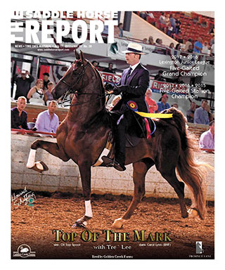 saddlehorse report