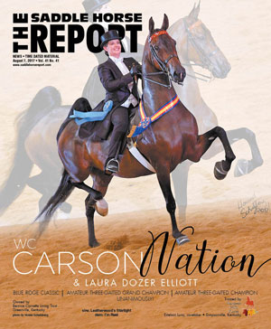 saddle horse report