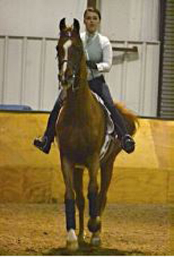 Issra National Championships To Be Held At Kentucky Horse Park Allt